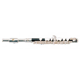 MAXTONE TPC60S Флейта пикколо фото