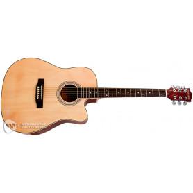 PARKSONS RFG111-41CNF Акустическая гитара фото