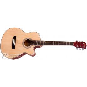 PARKSONS RFG111-38CNF Акустическая гитара фото