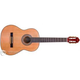 PARKSONS RCG001-39NF Классическая гитара фото