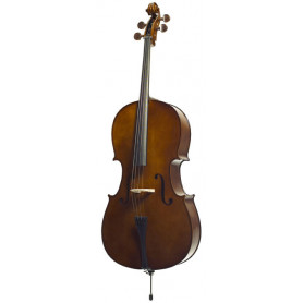 STENTOR 1102/F STUDENT I CELLO OUTFIT 1/4 Виолончель фото