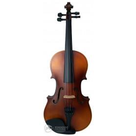 PARKSONS CV101 4/4 Скрипка фото