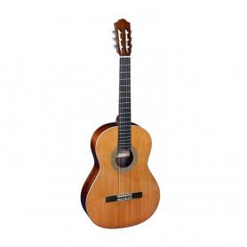 Класична гітара Almansa 402 фото