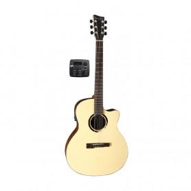 VG501820 Ел. акуст. гітара VGS BR-20 CE Belle Rose фото