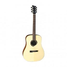VG501800 Гітара ак. VGS BR-10 Belle Rose фото