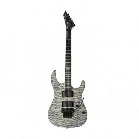 VG507305 Ел. гітара VGS Pro Series Screech (Fad.Transp.Bk) фото