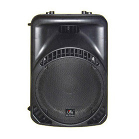 HL AUDIO MACK12 Акустическая система фото