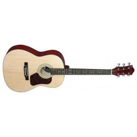 MAXTONE WGC3902 Акустическая гитара фото