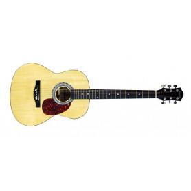 MAXTONE WGC3902 BK Акустическая гитара фото