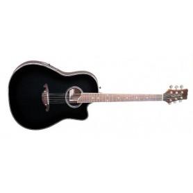PARKSONS EA205 (BKS) Электро-акустическая гитара фото