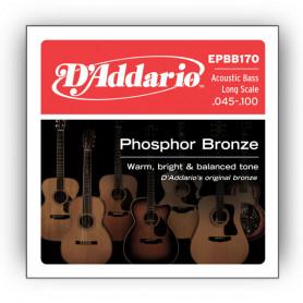 D`ADDARIO EPBB170 ACOUSTIC BASS PHOSPHOR BRONZE 4 STRING Струны