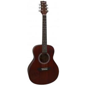 PARKSONS JB3613 Акустическая гитара фото