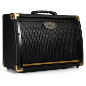 Комбоусилитель PEAVEY Ecoustic E208 Acoustic Amp Combo фото
