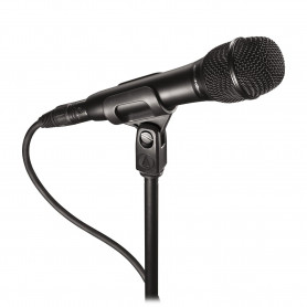 Студийный микрофон Audio Technica AT2010, конденсаторный