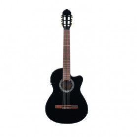 VG500162742 Ел. клас. гітара VGS Student E Black фото