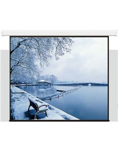 Екран Electric screen with remote control 350x219cm Matt White
