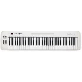SAMSON CARBON 61 MIDI клавиатура фото