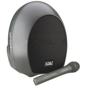 SOUNDKING SKWH065U Акустическая система фото